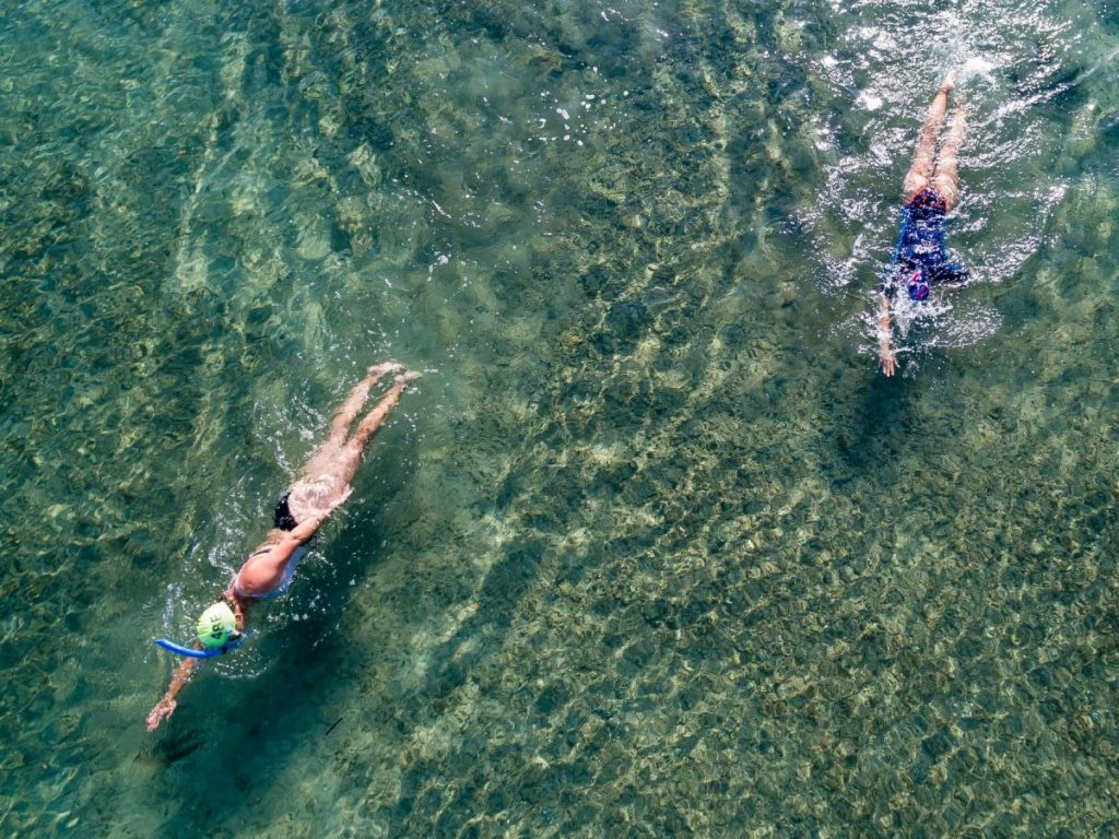 open water swimmers in clear shallow water