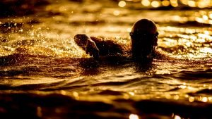 Protected: Open Water Swimming Sighting