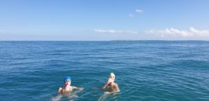 Your Robben Island Swim Guide: How to Prepare and What to Expect
